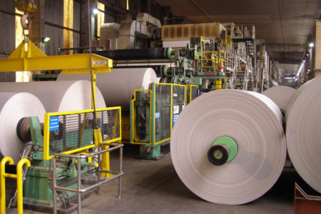 Rolls of paper in a recycling factory